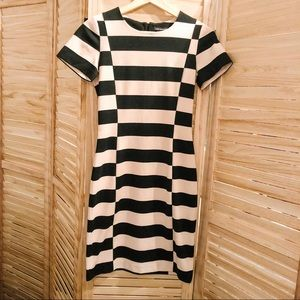 Fitted Club Monaco Dress